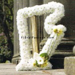 funeral-special-tributes-harp